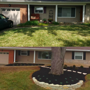 Before After Front Garden