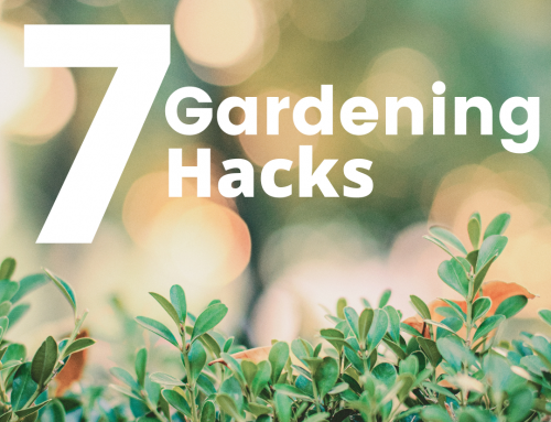 7 of our Favorite Garden Hacks!