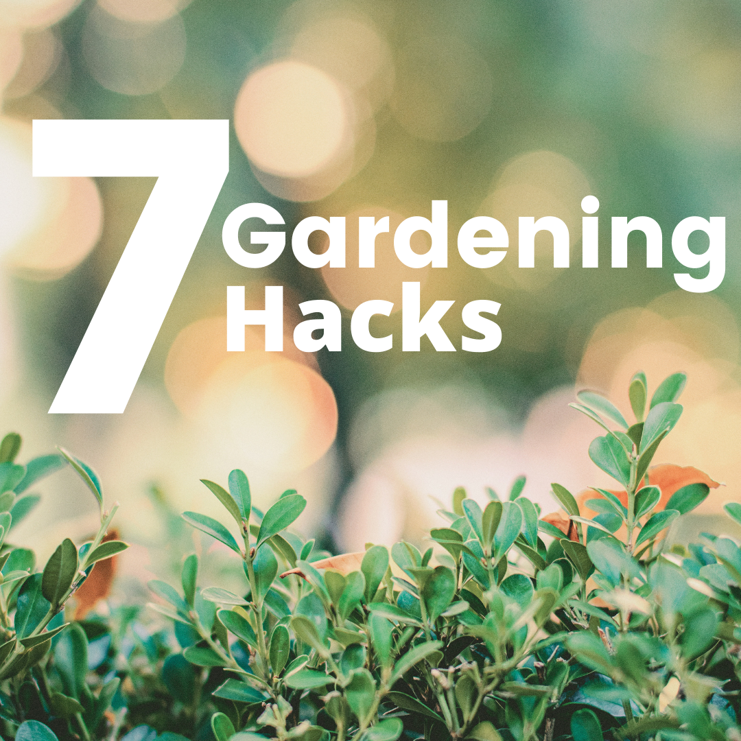 7 Gardening Hacks Creative Scapes
